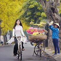 Voyage au Vietnam par mois
