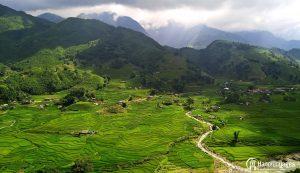 Photographie des rizières de Sapa au Printemps