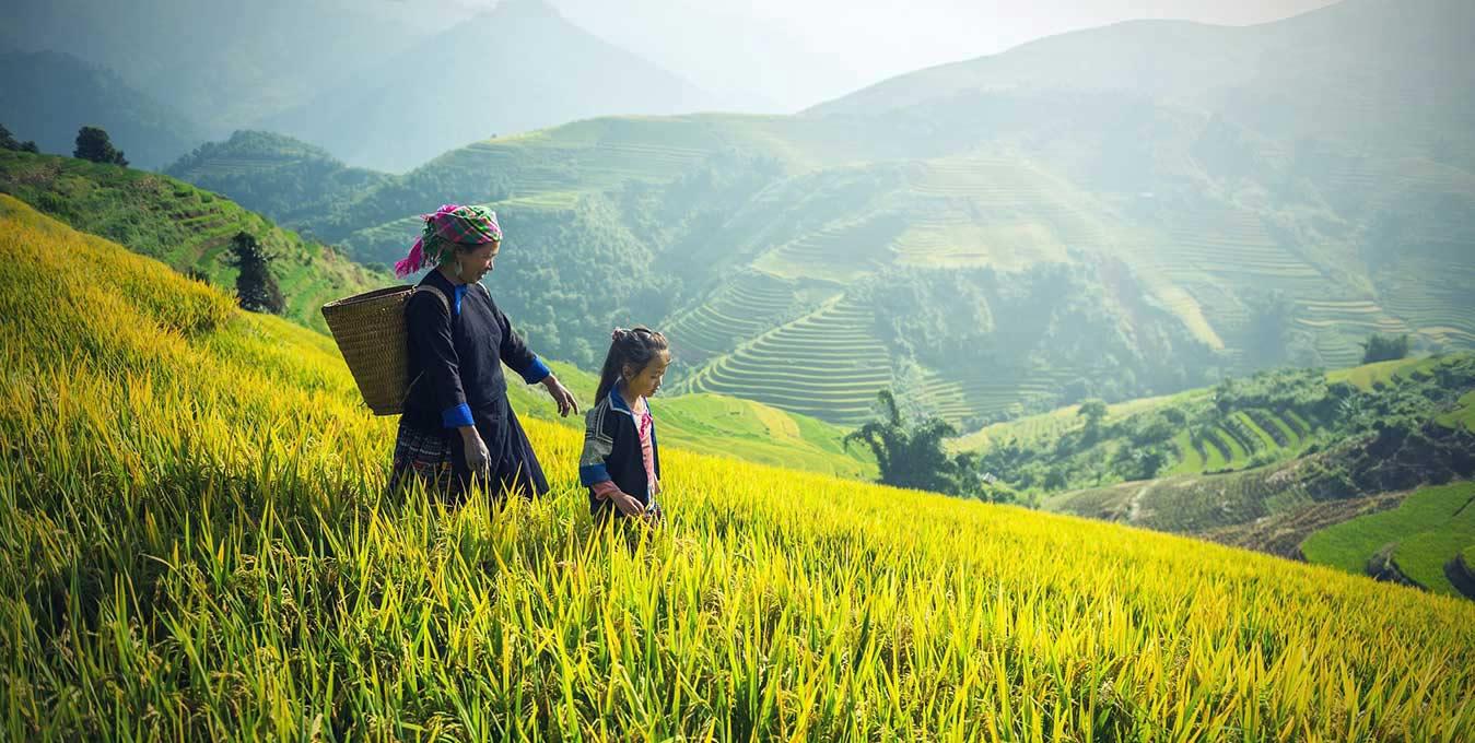 Voyage au Vietnam en été