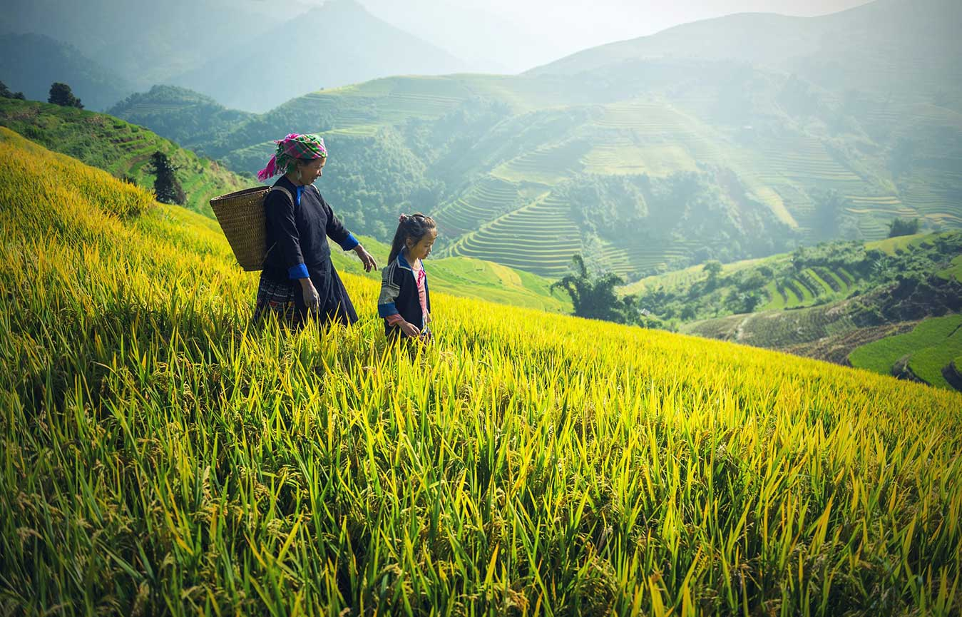 voyage au vietnam par moi