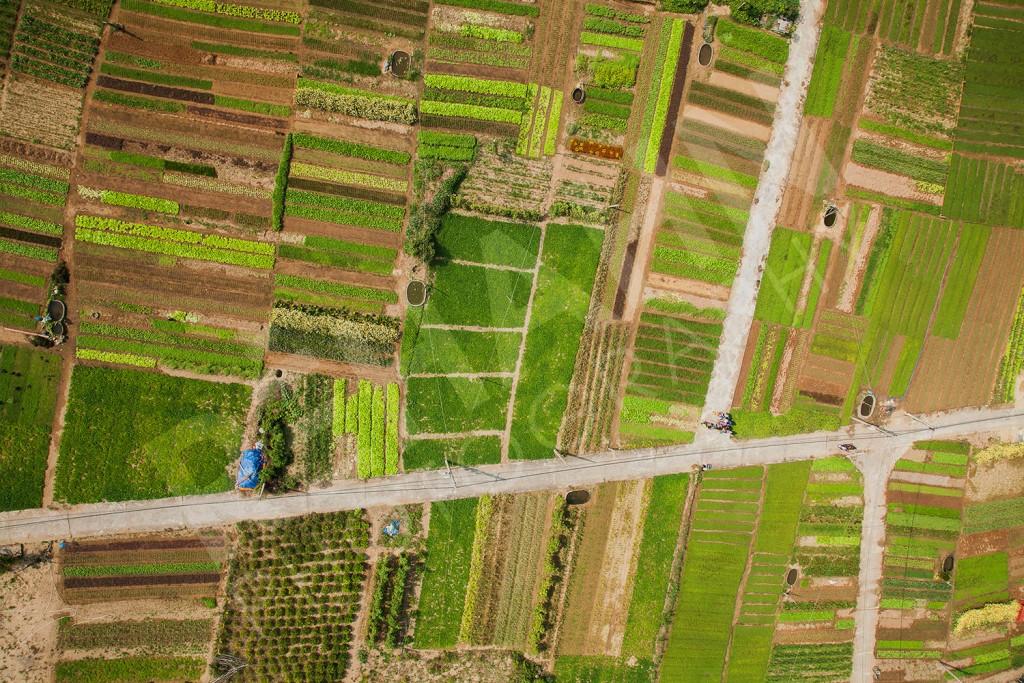 Tra Que village artisanal - Âme du Vietnam