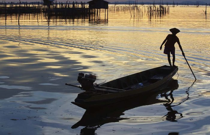 Pêche - Âme du Vietnam