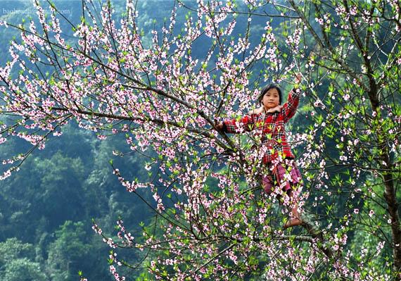 Moc Chau - Vietnam en juillet - Âme du Vietnam