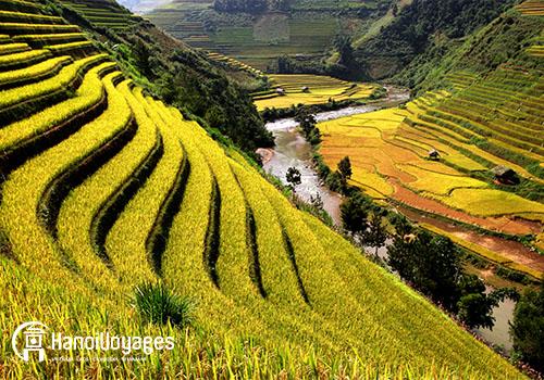 Sapa - Âme du Vietnam