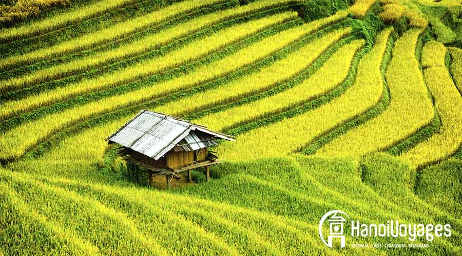 Mu Cang Chai - Vietnam en août - Âme du Vietnam