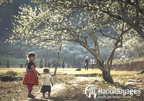 Ha Giang - Vietnam en décembre - Âme du Vietnam