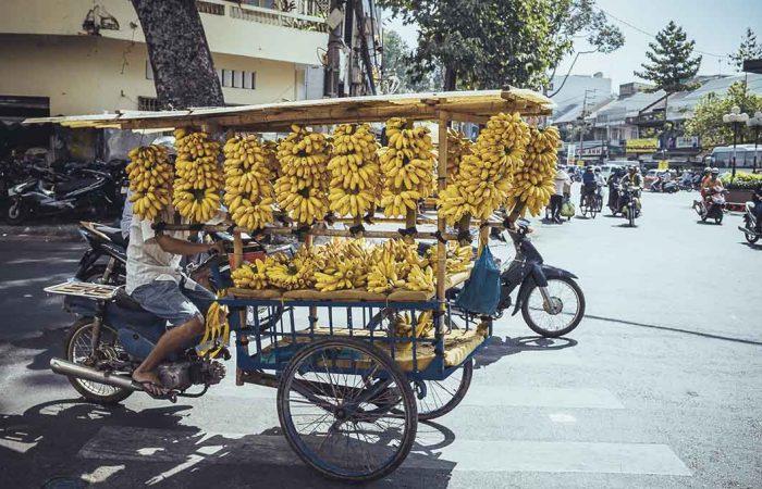 Sud du Vietnam - Âme du Vietnam