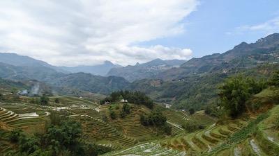 Champs de riz avec Sapa au loin