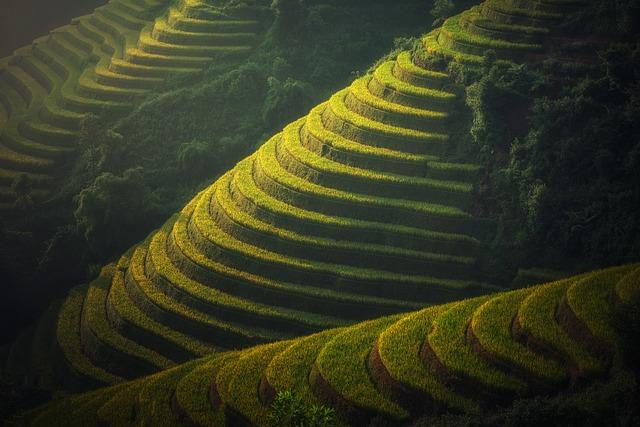 voyage-en-famille-Sapa-Vietnam
