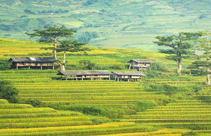 sapa-village-Vietnam
