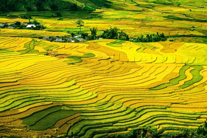 Les magnifiques couleurs de Mu Cang Chai