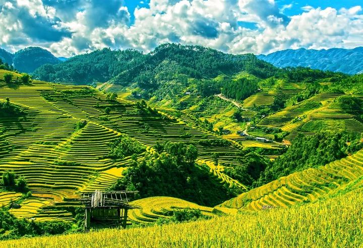Mu-cang-chai-vallée