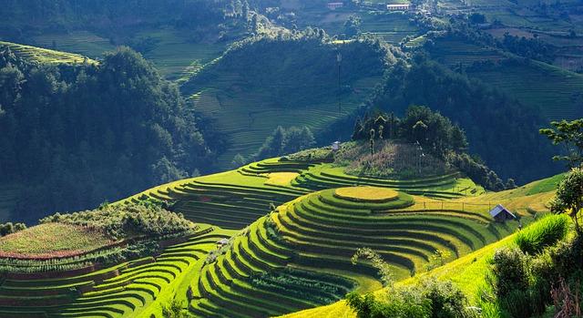 scenery-mu-cang-chai-vietnam