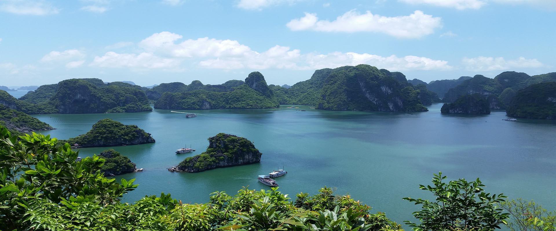 vietnam-environnement-banniere