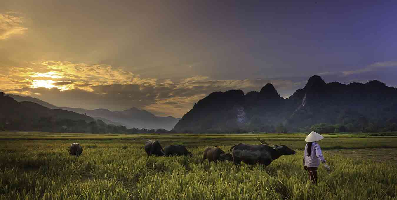 culture vietnam